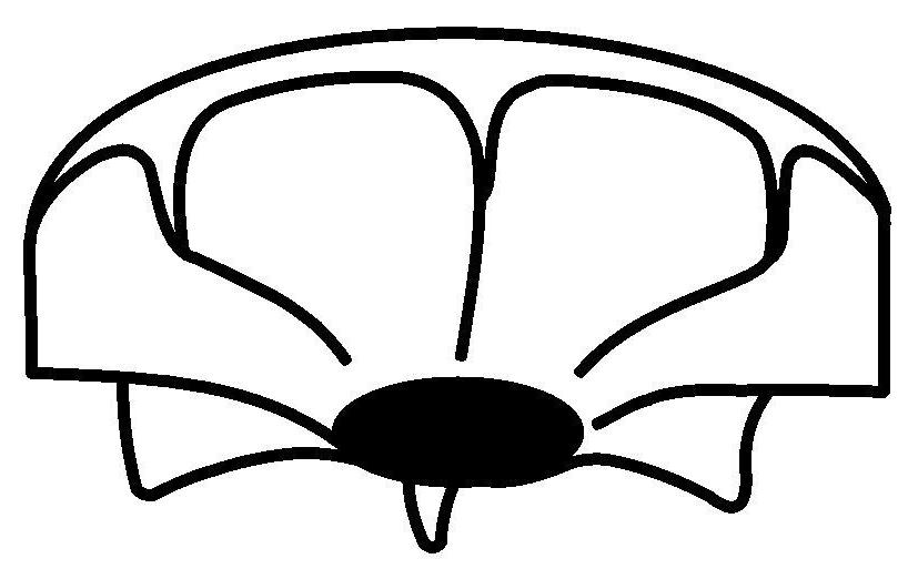 Logo von Wotschke GmbH Tauchpumpentechnik